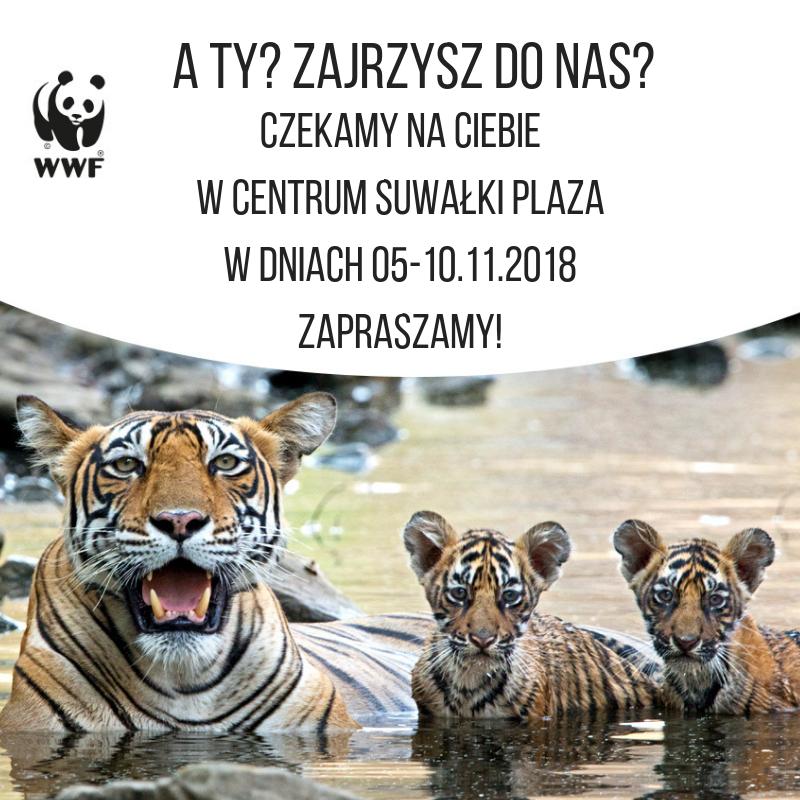 Stoisko WWF w Suwałki Plaza 🐼